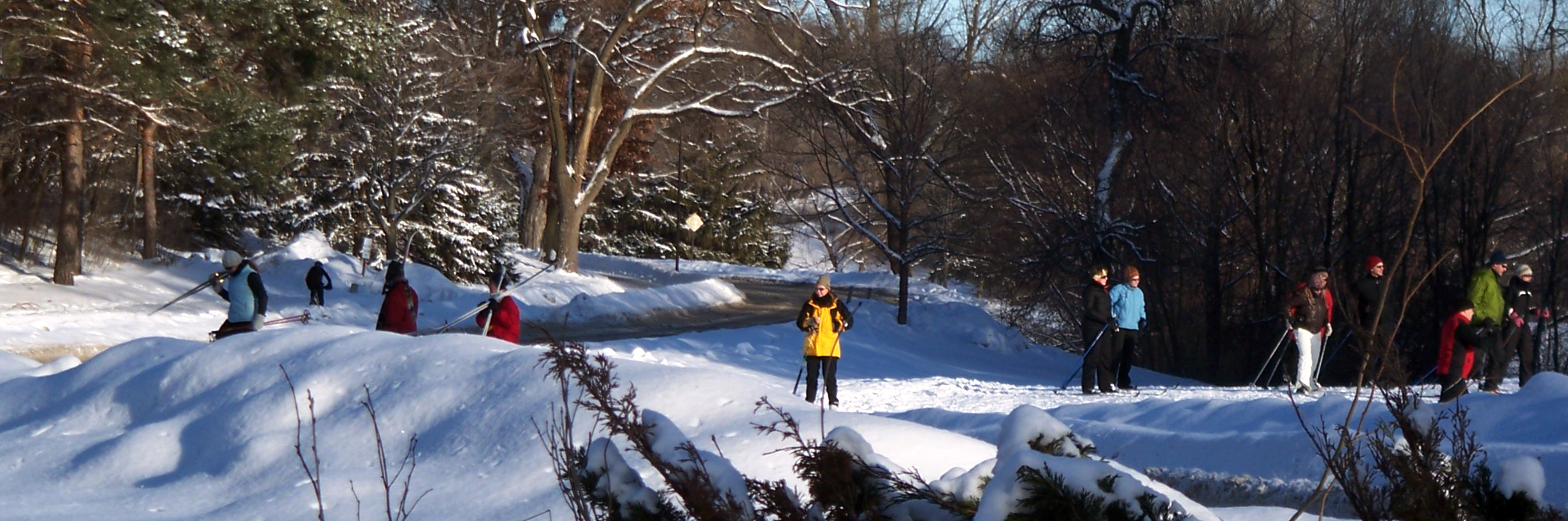 Cross Country Skiing At Theodore Wirth Park