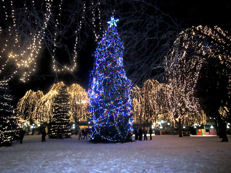 Where Are The Best Christmas Light Displays In The Twin