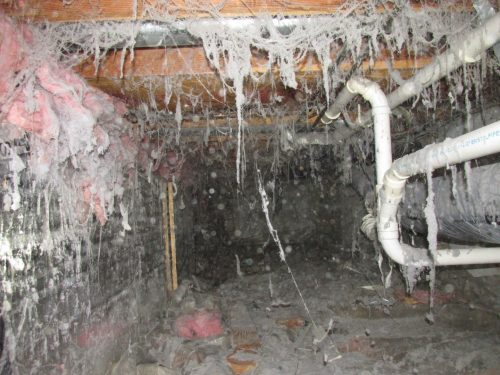 Creepy crawl space