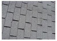 1025 Winnetka - roof