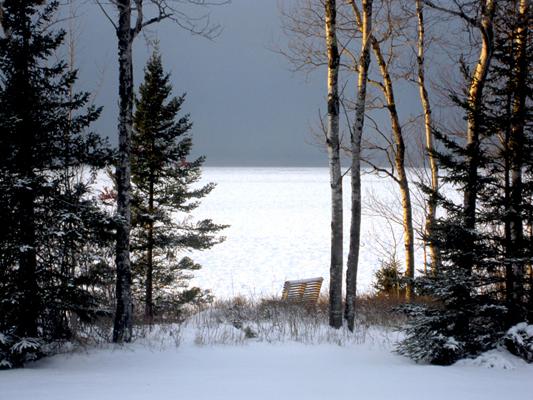 Bark point-winter1-400
