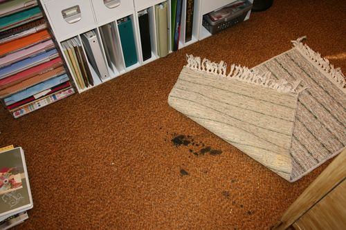 Rug over stain