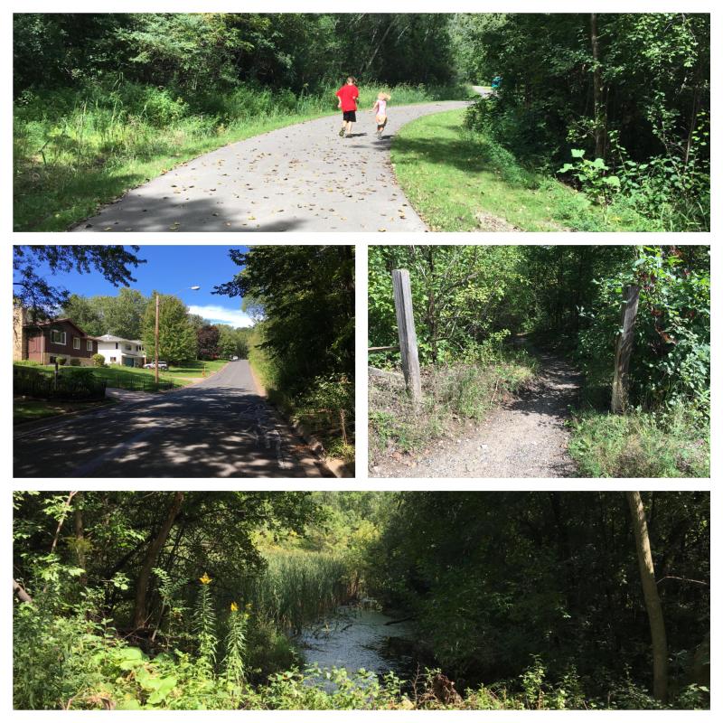 Rice Lake Nature Area - fotor collage