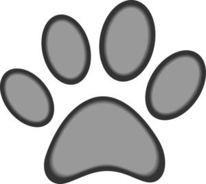 dog-or-cat-paw-print